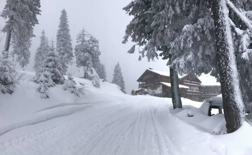 Joi, 30 noiembrie, sărbătorim Sf. Andrei prin deschiderea sezonului 2017-2018 la ski înPostăvaru!